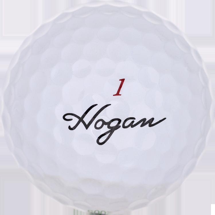 Hogan The Hawk