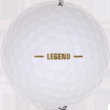 Hogan Legend