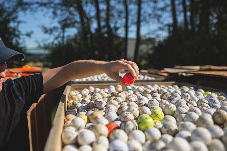 Rosa Golfball inmitten von schmutzigen Bällen